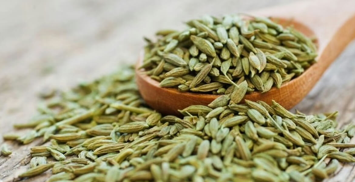 fennel-seeds-suppliers-in-Dubai